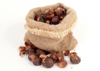 Original India Soapnut Shells - 50g till 1Kg